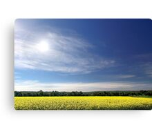Sun Halo Over Canola Field Canvas Print