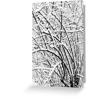 Snow Patterns 2 BW Greeting Card