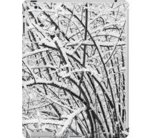 Snow Patterns 2 BW iPad Case/Skin