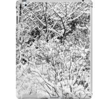 Snow Patterns 4 BW iPad Case/Skin