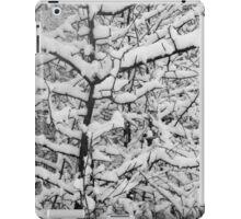 Snow Patterns BW iPad Case/Skin