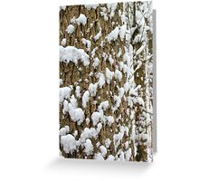 Snow Speckled Tree Greeting Card