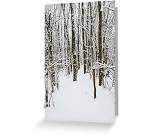 Snowy Forest 14 Greeting Card
