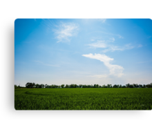Blue over green Canvas Print