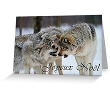 Timber Wolf Christmas Card - French - 13 Greeting Card