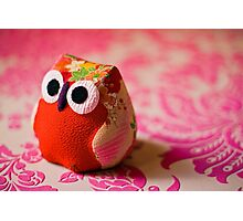 Kimono owl Photographic Print
