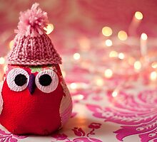 Winter owl in woolly hat  by Zoe Power