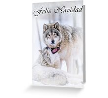 Timber Wolf Christmas Card - Spanish - 16 Greeting Card
