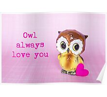 Owl always love you Valentine card Poster