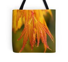 Autumn leaves and Halloween Tote Bag