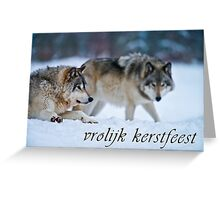 Timber Wolf Christmas Card - Dutch - 17 Greeting Card