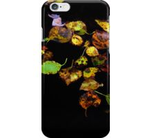 Autumn leaves in water iPhone Case/Skin