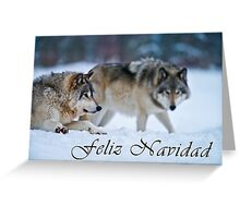 Timber Wolf Christmas Card - Spanish - 17 Greeting Card