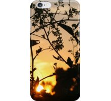 Around me iPhone Case/Skin