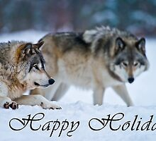 Timber Wolf Holiday Card - 17 by WolvesOnly