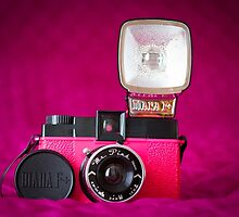 Mr. Pink - Diana F+ Camera by Zoe Power