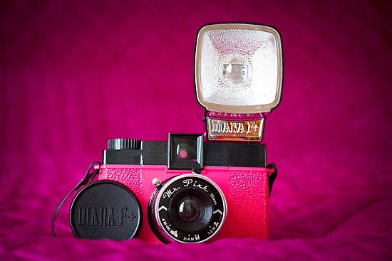 Mr. Pink - Diana F+ Camera by Zoe Power