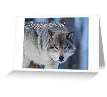 Timber Wolf Christmas Card - French - 18 Greeting Card