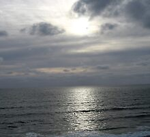 Left Coast by emilymartian