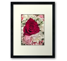 Floral photograph - red rose pink and white background Framed Print
