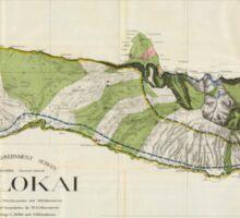 Vintage Map of Molokai Hawaii (1906) Sticker