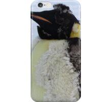 Molting Emperor Penguin iPhone Case/Skin