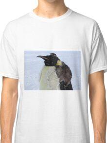 Molting Emperor Penguin Classic T-Shirt