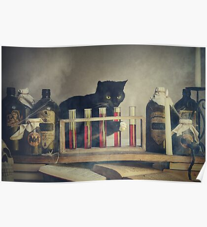 The Witch's Cat. Poster