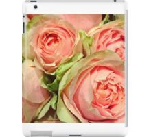 Floral photograph - pink and peach tone roses iPad Case/Skin