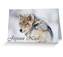 Timber Wolf Christmas Card - French - 19 Greeting Card
