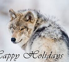 Timber Wolf Holiday Card - 19 by WolvesOnly