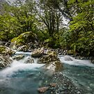 Headwaters of the Hollyford by Paul Mercer