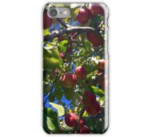 Fruition iPhone Case/Skin