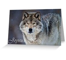 Timber Wolf Christmas Card - French - 20 Greeting Card