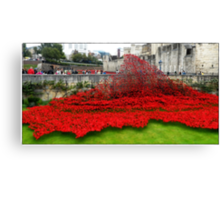Tower Poppies, London Canvas Print