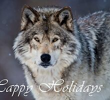 Timber Wolf Holiday Card - 20 by WolvesOnly
