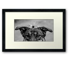 Flower Child Part 2 Framed Print