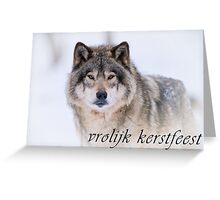 Timber Wolf Christmas Card - Dutch - 21 Greeting Card