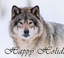 Timber Wolf Holiday Card - 21 by WolvesOnly