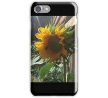 Bumblebee on Sunflower iPhone Case/Skin