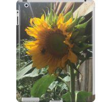 Bumblebee on Sunflower iPad Case/Skin