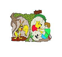 Pooh gets bit Photographic Print
