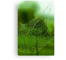 water web Canvas Print