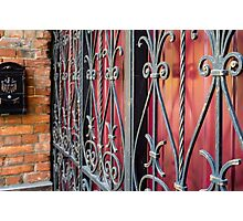 Detail of an old iron fence Photographic Print