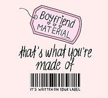 boyfriend material by sparklysky
