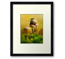The spider and the fly Framed Print