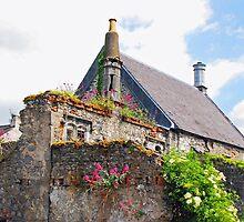 Kilkenny House by mcstory