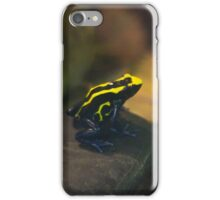 Frog 1 iPhone Case/Skin