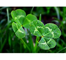 The Luck of the Clover Photographic Print