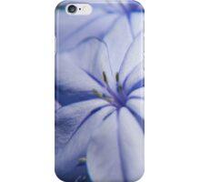 Beautiful garden flowers iPhone Case/Skin
